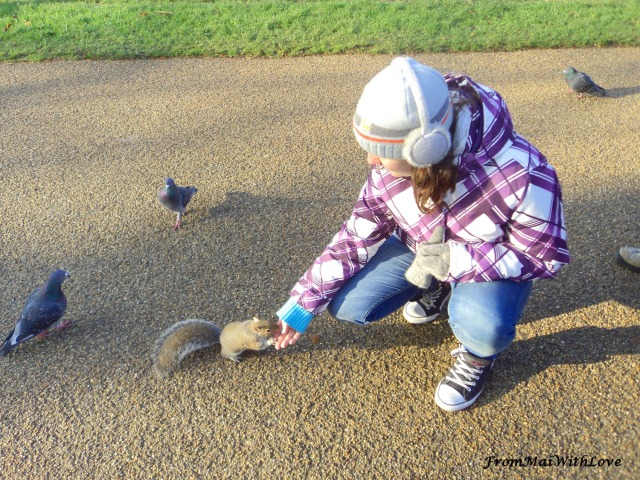 Hyde Park London with squirrel