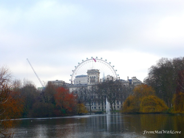 London Eye from Hyde Park London