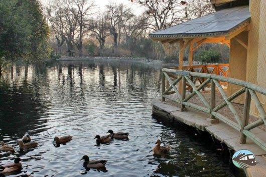 Parque_capricho